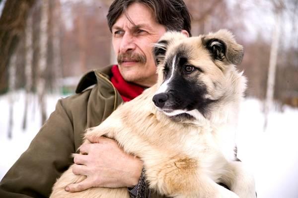 que hace un etologo canino, etologia canina, foto de etologo canino