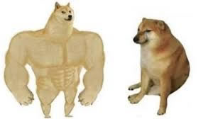 imagen del meme original de cheems vs swole dog