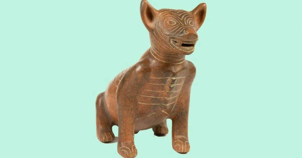 foto de perro techichi, razas de perros de méxico